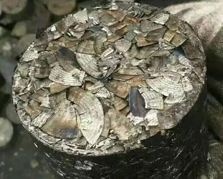铁屑成型后样品
